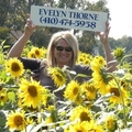 Evelyn Thorne Real Estate Agent at Home Towne Real Estate