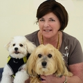 Pamela Giordano Real Estate Agent at COLDWELL BANKER COAST & COUNTRY